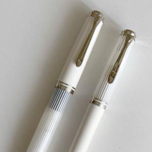 「忘年筆」「新年筆」にスーベレーンを買ったら、大変な感じになっていった話